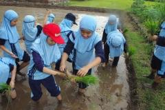 Pembelajaran_di_alam-4